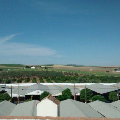 vistas2 desde la terraza del albergue de peregrinos luz del camino